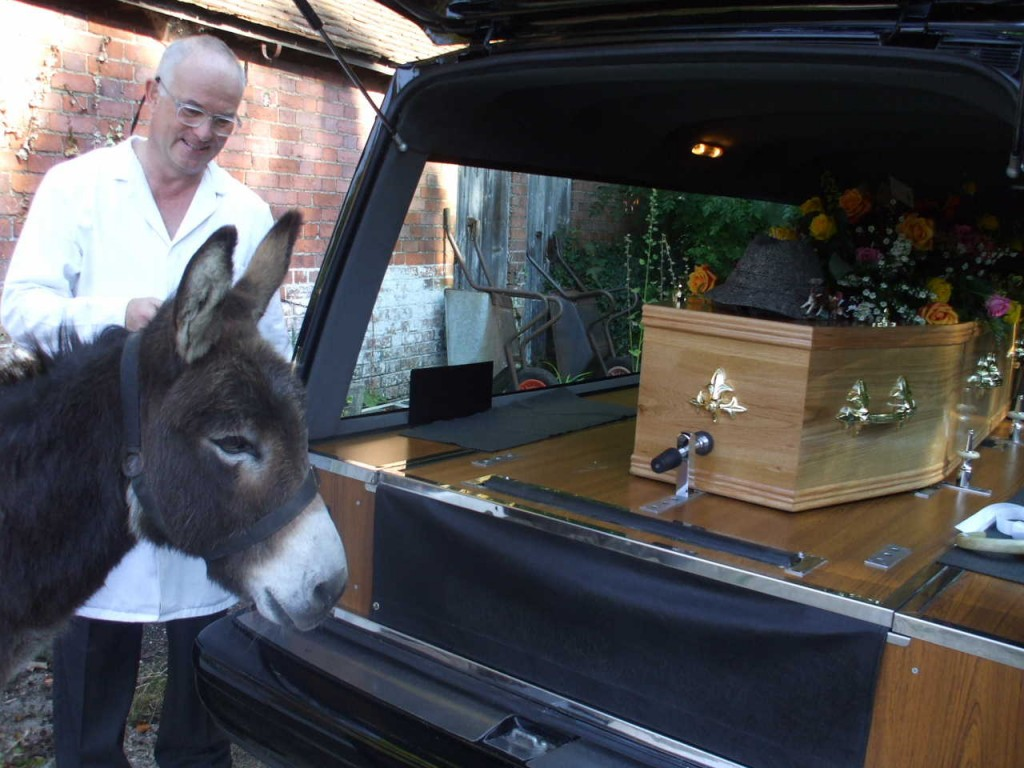 Donkey pays respects